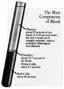 This illustration is taken from the October 22, 1990 issue of Awake! You will note that plasma constitutes 55% of the blood. Since the Watchtower Society allows Witnesses to accept the separate components of plasma, it is only reasonable to ask why they forbid the use of plasma itself?